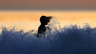 معنى حلم السباحة في البحر للمتزوجة