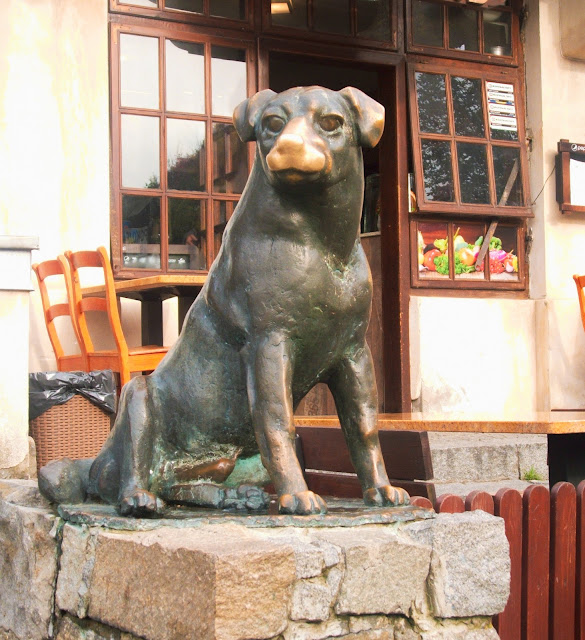 rzeźba, Kazimierz Dolny, pies, szczęście, rynek