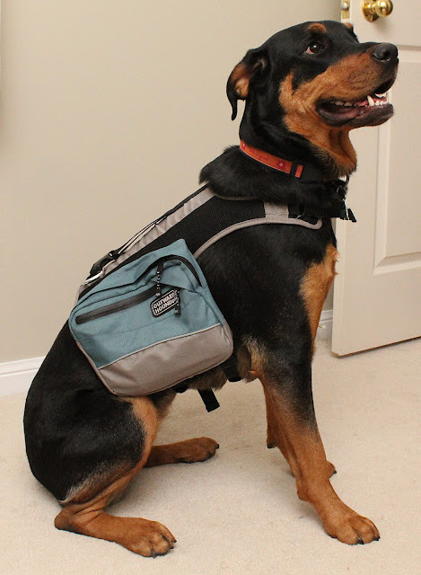Outward Hound Backpack Dog