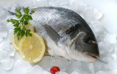 Δωρεάν sites γνωριμιών ψάρια
