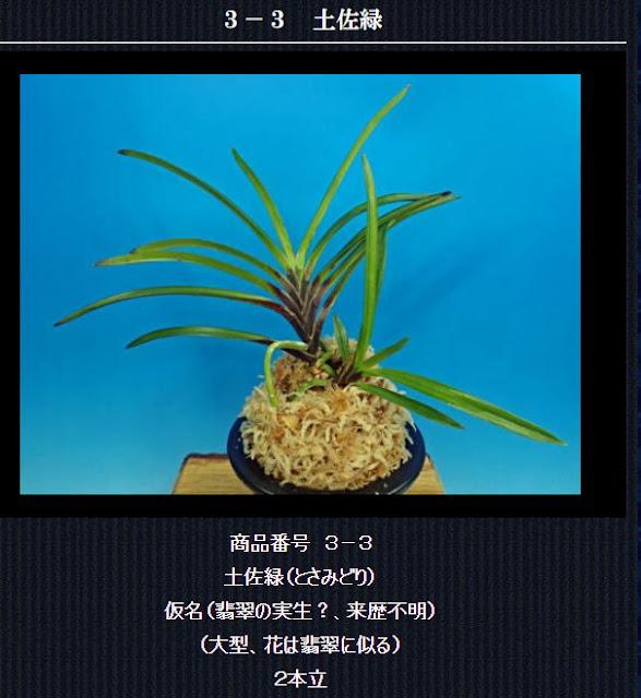 http://www.fuuran.jp/3-3.html