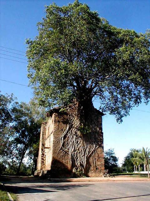Nesta capelinha de Barra do Guaicu, MG, o bioma parece ter progredido.