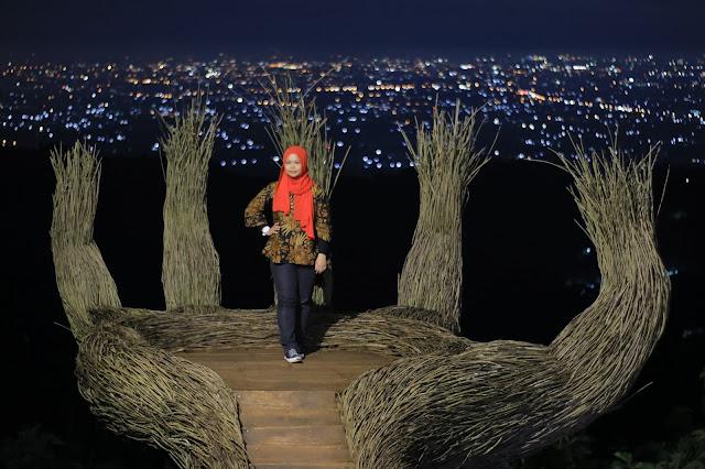 Hutan Pinus Pengger Tempat Permandangan Malam Yang Cantik