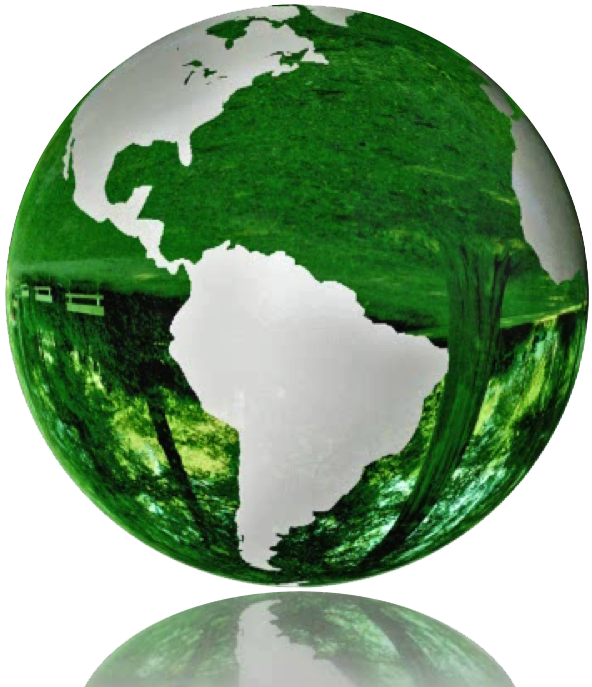 Secura Blog Clean Green For A Safer Home And Environment