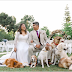 Look: This couple's seven furry friends joined the entourage in their garden wedding