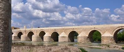 Agua civilización romana