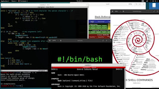 Bash Shell Programming from the Ground Up / couponed