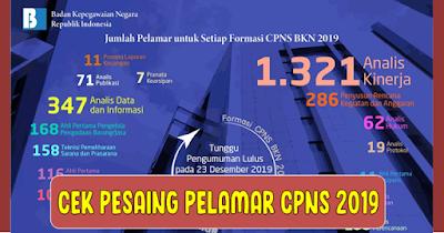 Pelamar Sudah Bisa Lihat Pesaing Formasi CPNS 2019