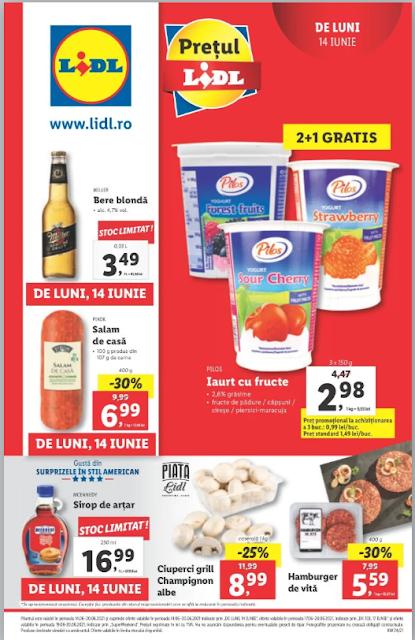 LIDL catalog brosura    14-20.06 2021