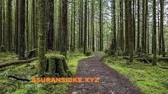 Lestarikan Hutan Untukmu Bernapas