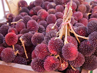 Pulasan Fruit Pictures