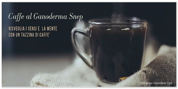 Snep Caffe Al Ganoderma