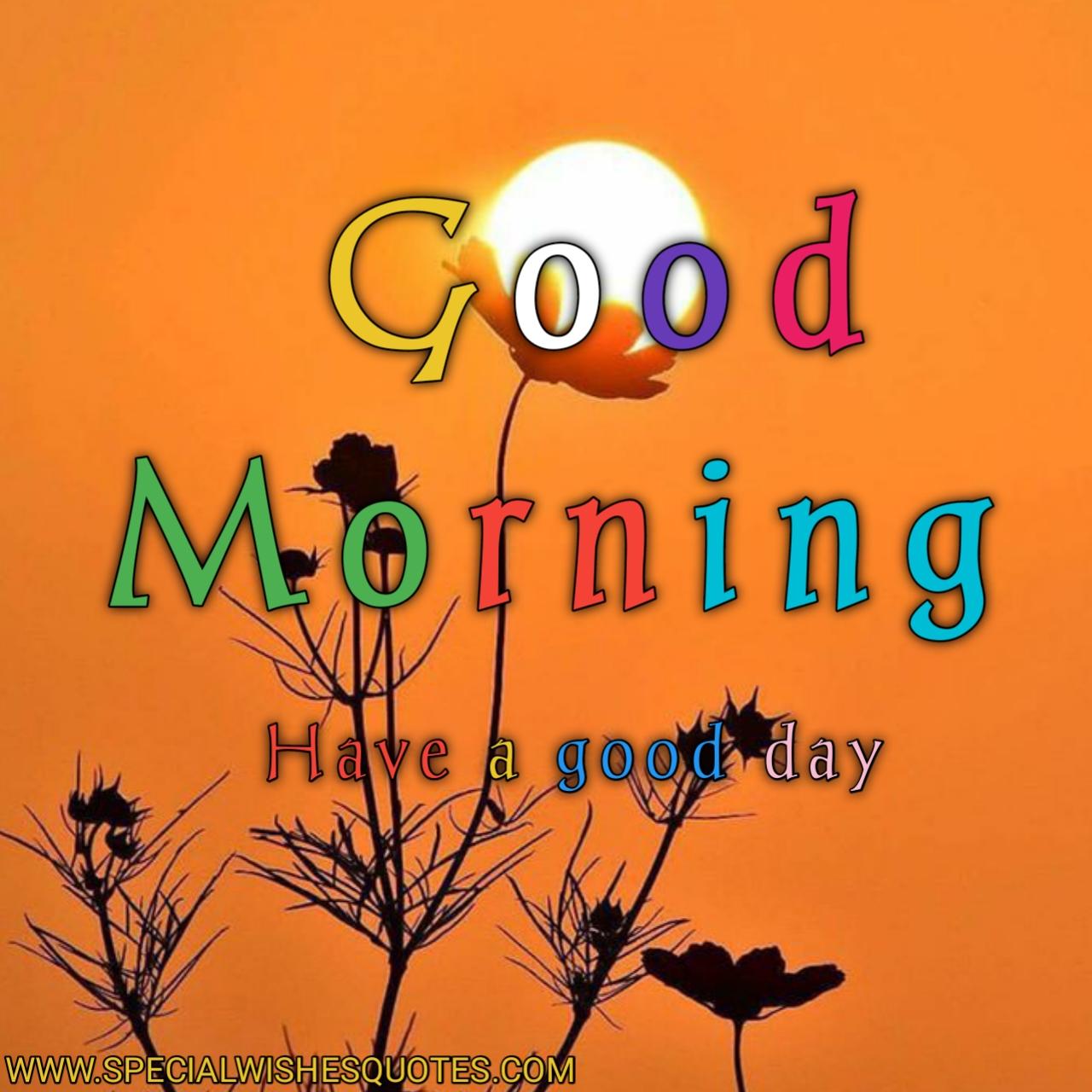 sunday good morning image