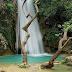 Το φαράγγι της Νέδας: Απαράμιλλη ομορφιά και σπάνια τοπία – Εικόνες, βίντεο