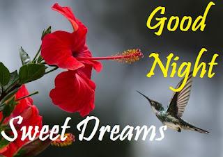 good night sweet dreams images flowers