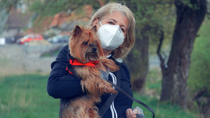 dog health care & wellness