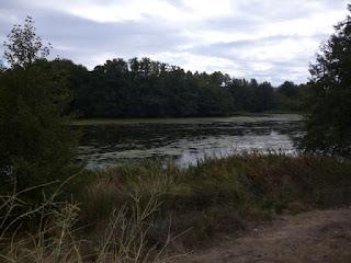 Cauce del río Tormes