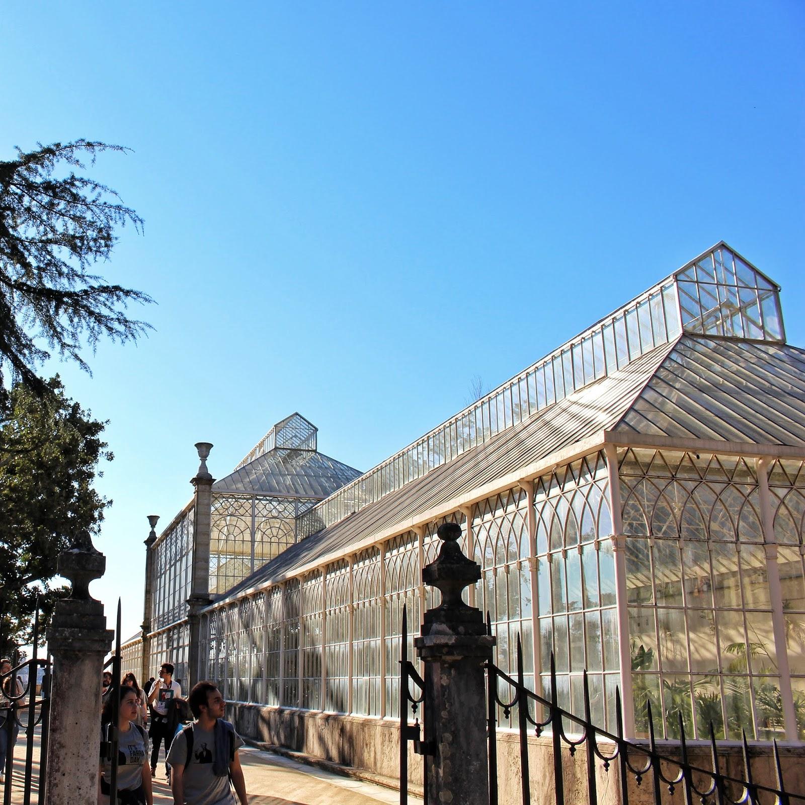 Estufa do Jardim Botânico da Universidade de Coimbra