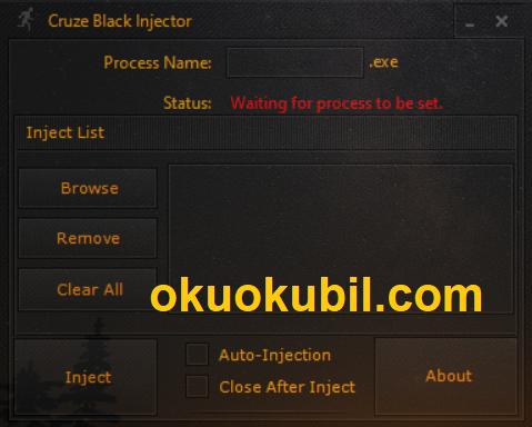 Cruze Black DLL Injector Programı Her Oyun İçin Uyumlu Güncel İndir