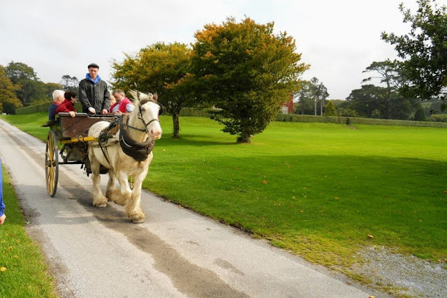 Ring of Kerry Route: A horse-drawn carriage at Muckross House