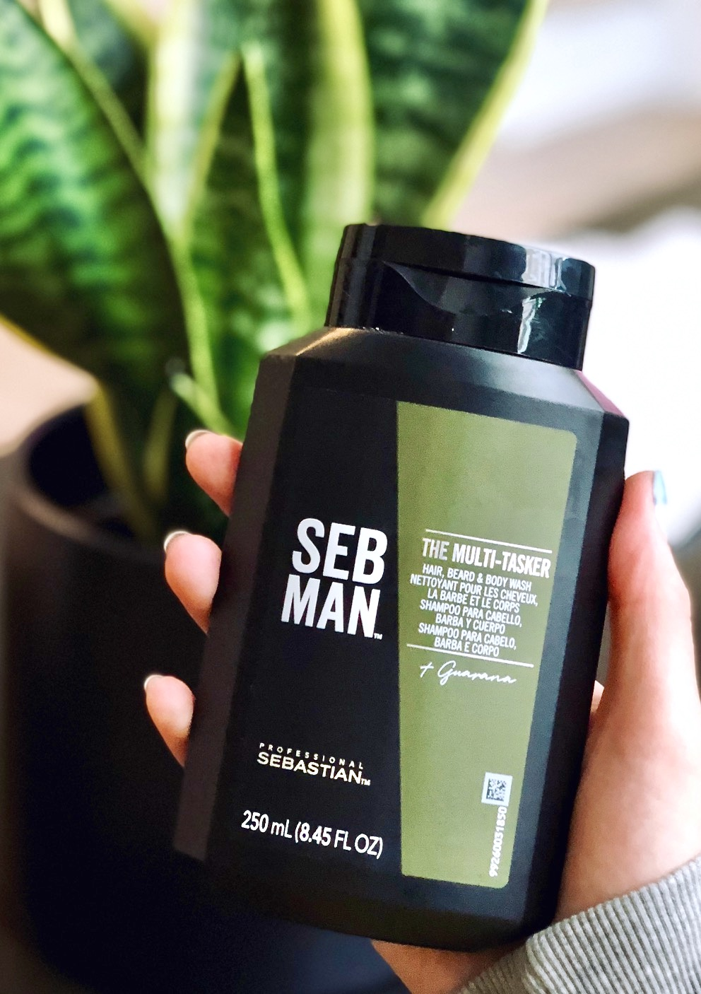 SEBMAN THE MULTI-TASKER Review