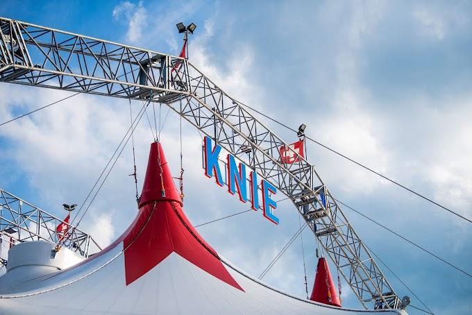Circo Knie 2020: le ultime tre tappe in Ticino a metà novembre