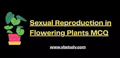 MCQ on Sexual Reproduction in Flowering Plants Pdf