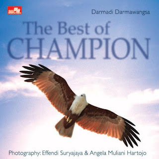 The Best Of Champion
