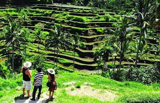 Sewa Mobil Jogja menuju Desa Wisata Nglinggo