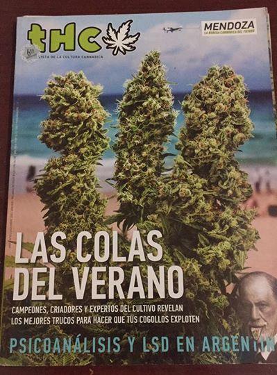 REVISTA THC | LAS COLORES DEL VERANO