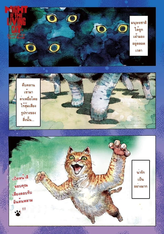 อ่านการ์ตูน Nyaight of the Living Cat ตอนที่ 2 หน้าที่ 1