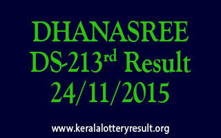 DHANASREE DS 213 Lottery Result 24-11-2015