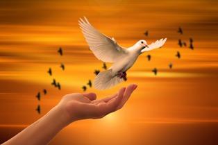 Buona Domenica Frasi Religiose Per Augurare Una Buona Giornata