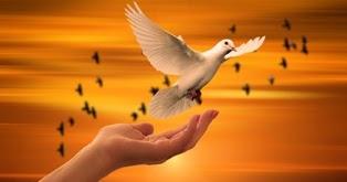 Buona Domenica Frasi Religiose Per Augurare Una Buona