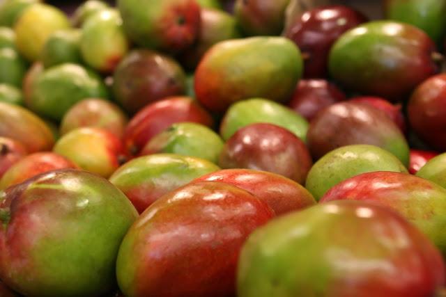 Venezuela logra exporta 10 toneladas de mangos