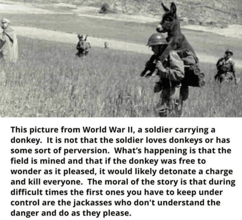 Carrying a Donkey
