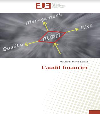 L'audit financier de Moulay el Mehdi FALLOUL en PDF