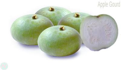 কদু; Apple gourd; أبل القرع; 苹果葫芦; Apfelkürbis; ऐप्पल gourd; アップルのひょうたん; Cabaça de maçã; Calabaza de manzana