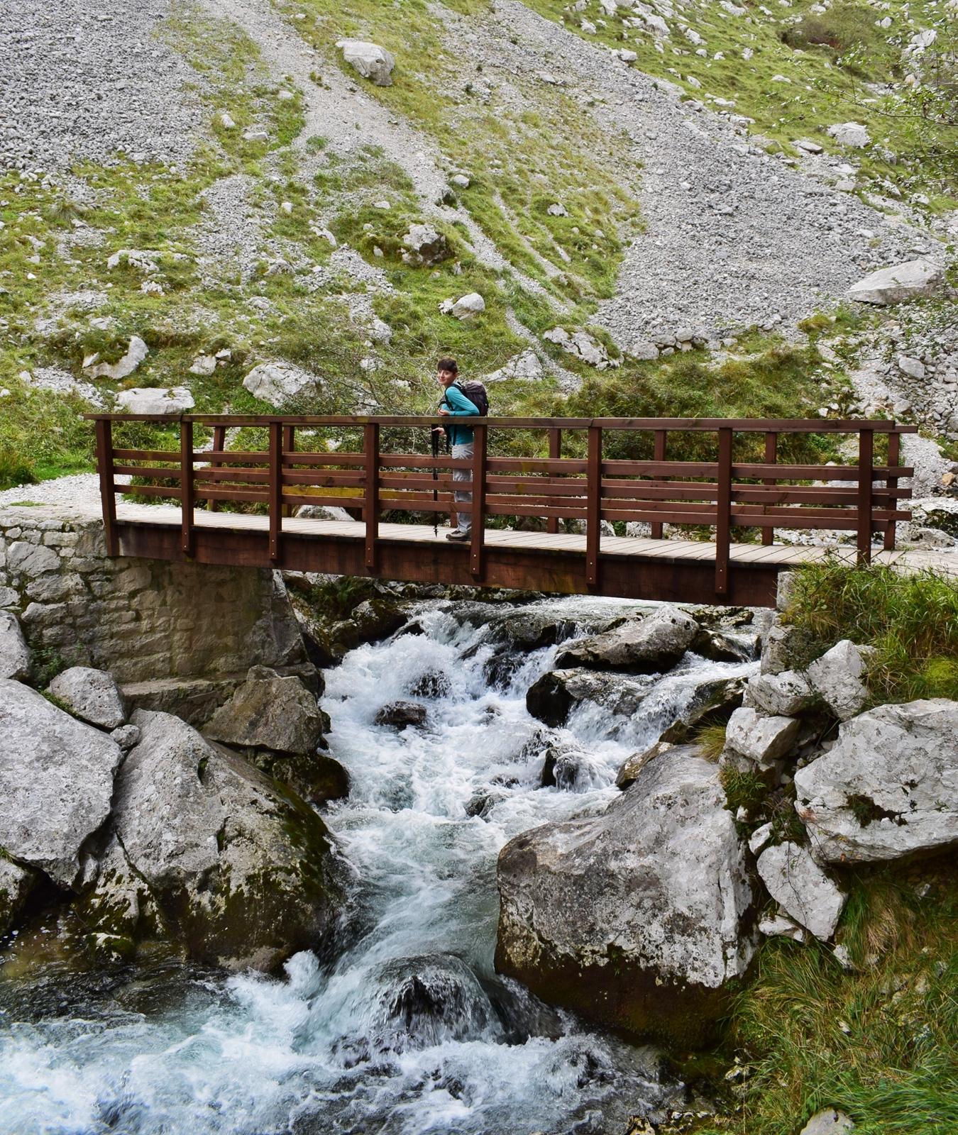 puente del zardo