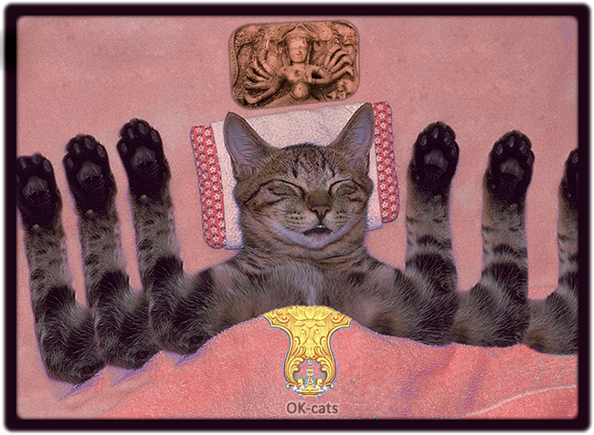 Photoshopped Cat picture •  Shhh... Vishnu Cat is sleeping. Peace and love (...and cat naps)