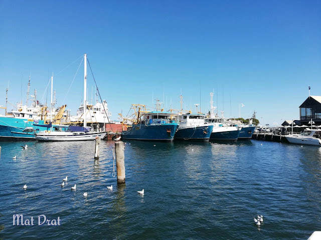 Fremantle Fishing Boat Harbour.