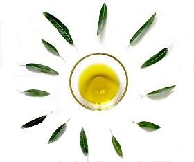 الدهون الصحية مثل زيت الزيتون مهمة في زيادة معدل الحرق في الجسم