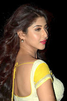 Sonarika Bhadoria in Saree Spicy Pics (8).jpg