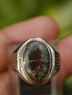 pirus persia