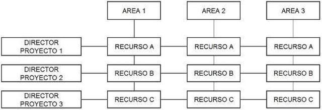 La dirección de proyectos en organizaciones matriciales