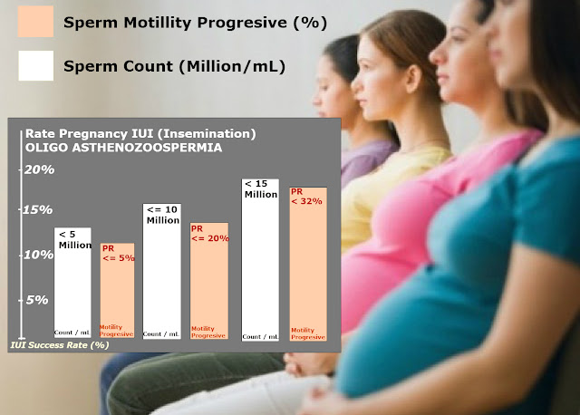 Ilustrasi Grafik : Prosentase Kehamilan Oligo Asthenozoospermia dengan Tekhnologi Reproduksi Berbantu Inseminasi Buatan (IUI)