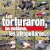 Exigen comparecencia de Renato Sales y Enrique Galindo por matanza en Tanhuato