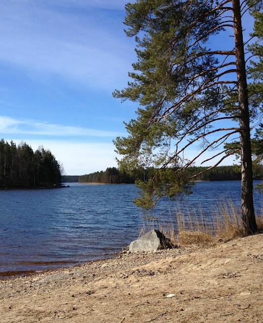 ranta, järvi, luonto, kevät