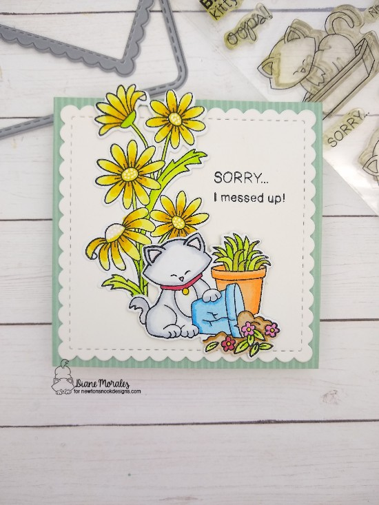 Sorry I messed up by Diane features Dainty Daisies, Naughty Newton, and Frames Squared by Newton's Nook Designs; #newtonsnook, #cardmaking