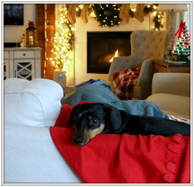 Vintage Inspired Farmhouse Christmas Tree-Farmhouse Dog-Mini Doxie-Weenie Dog- From My Front Porch To Yours